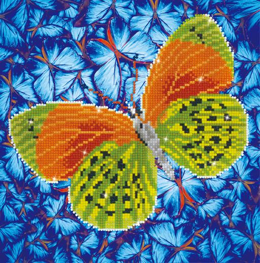DD5.022diamonddotzpapillonterre