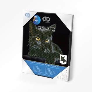 DDK5 (4)